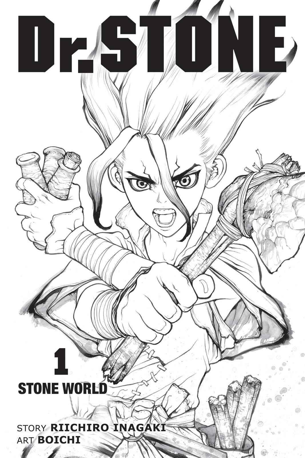 Dr. Stone Chapter 1 Page 4