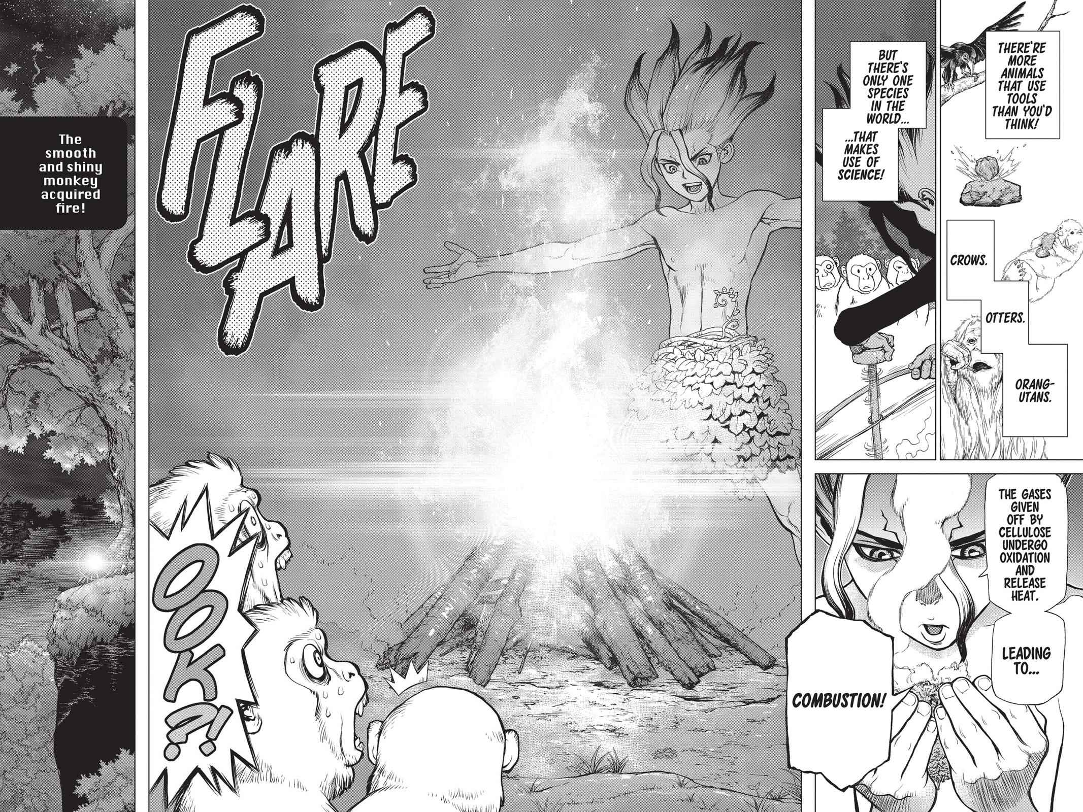 Dr. Stone Chapter 13 Page 15