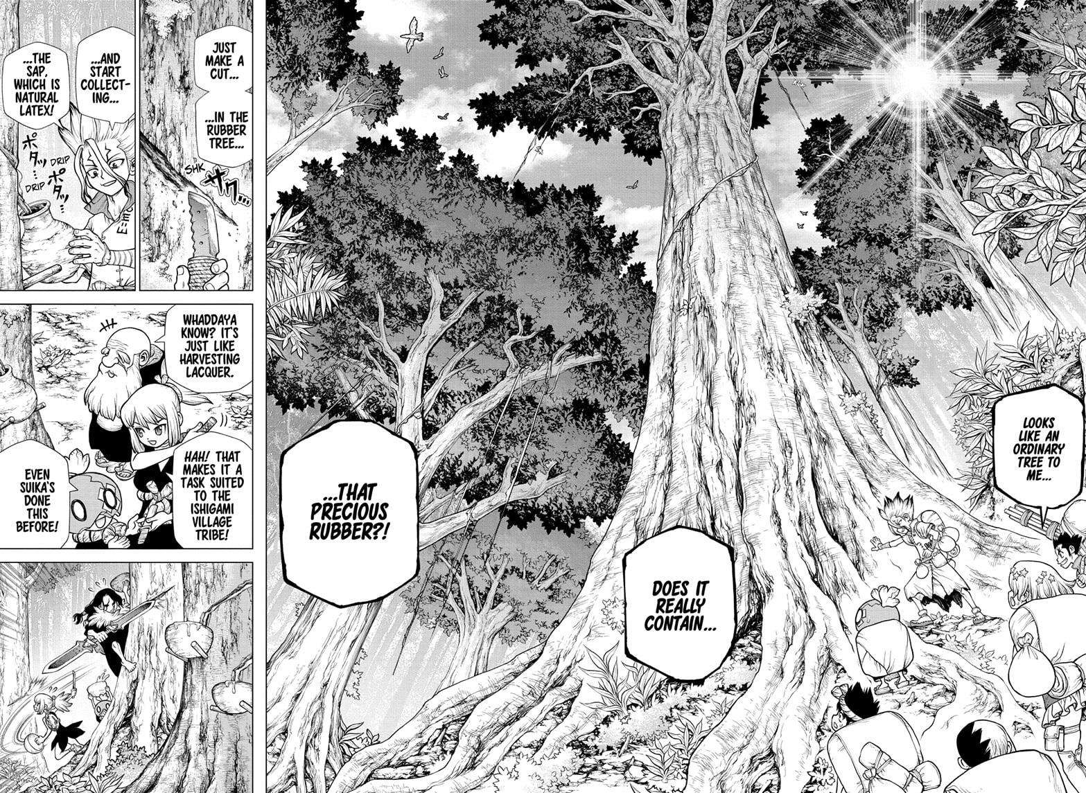 Dr. Stone Chapter 174 Page 11