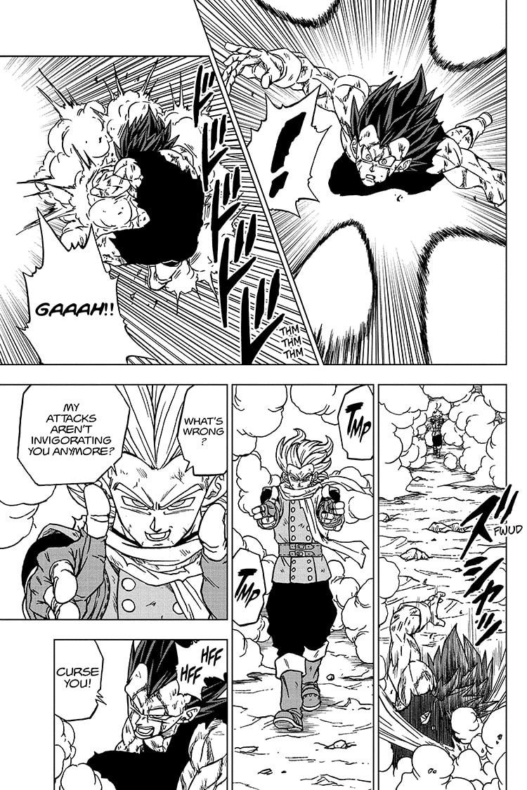 Dragon Ball Super Chapter 76 Page 3