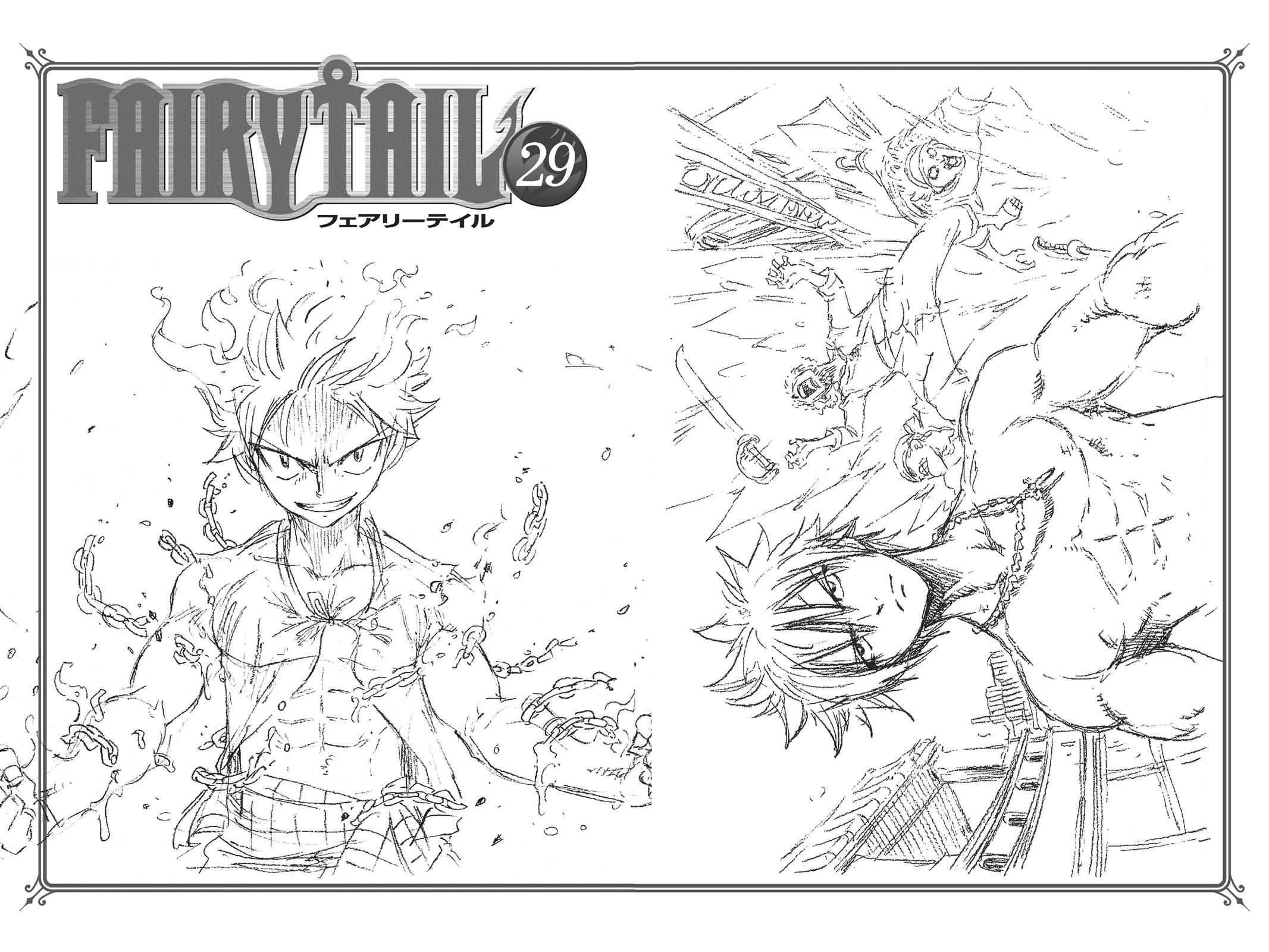 Fairy Tail Chapter 248 Page 27