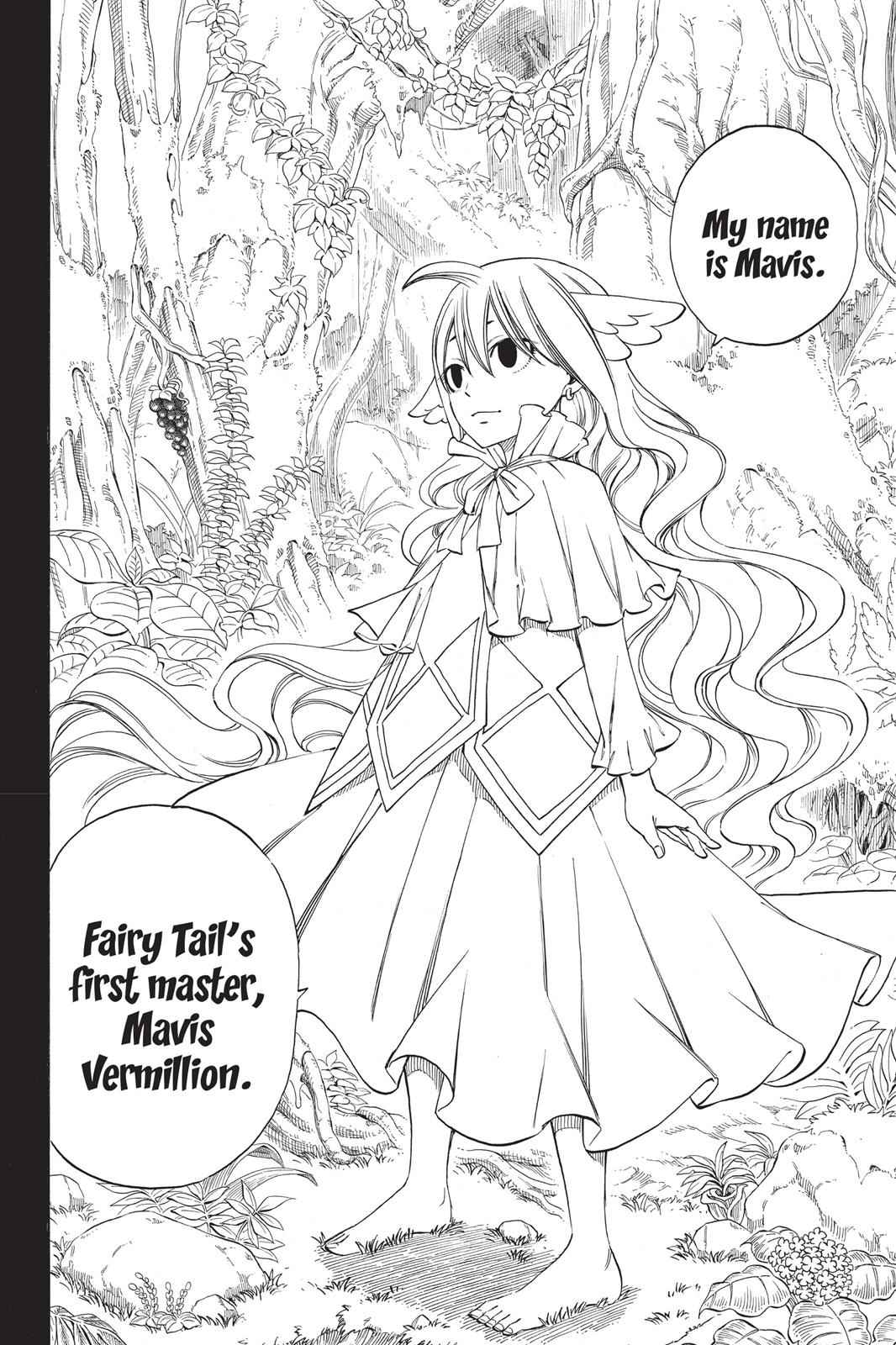 Fairy Tail Chapter 255 Page 15