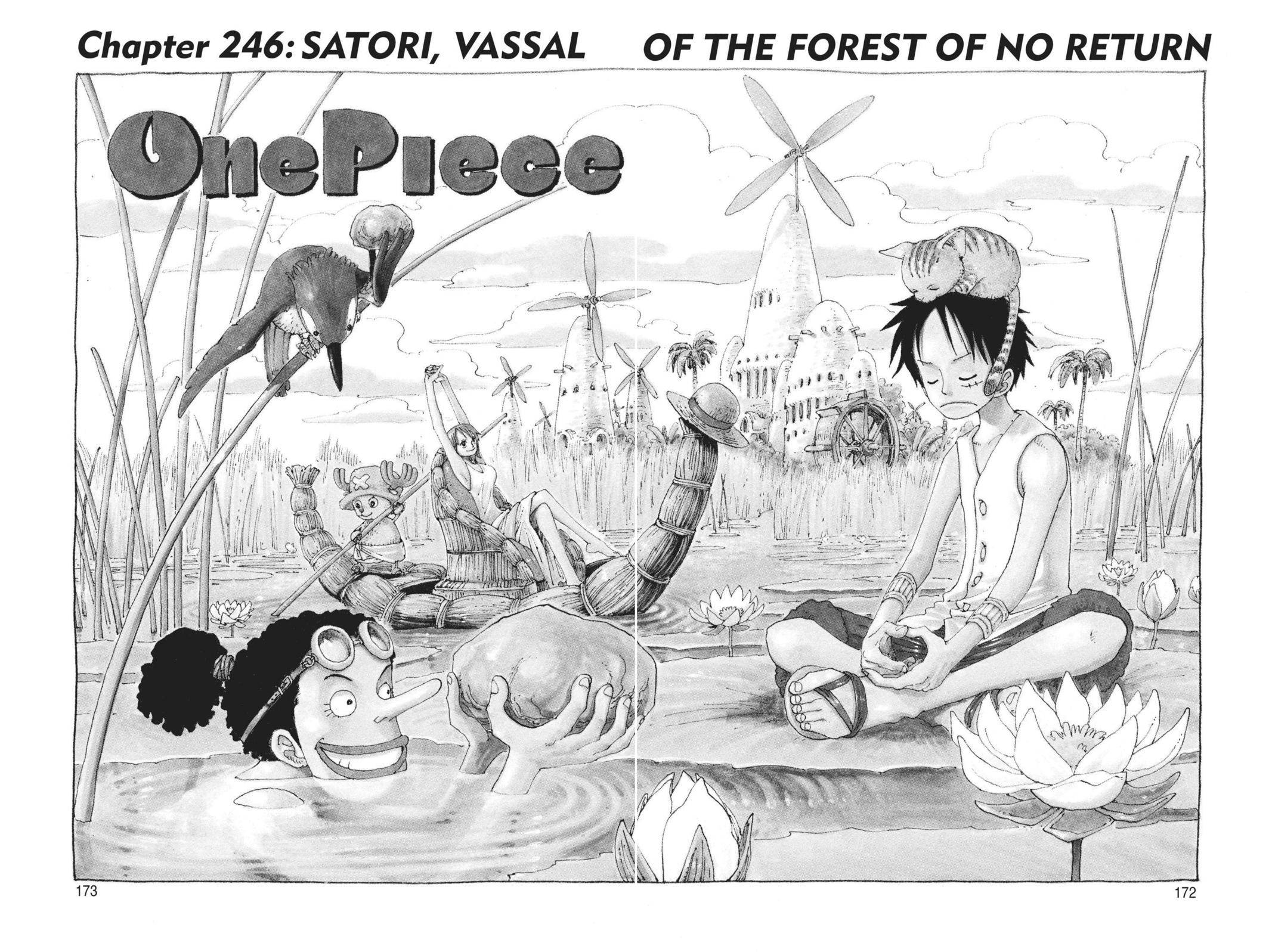 One Piece Chapter 246 Page 1