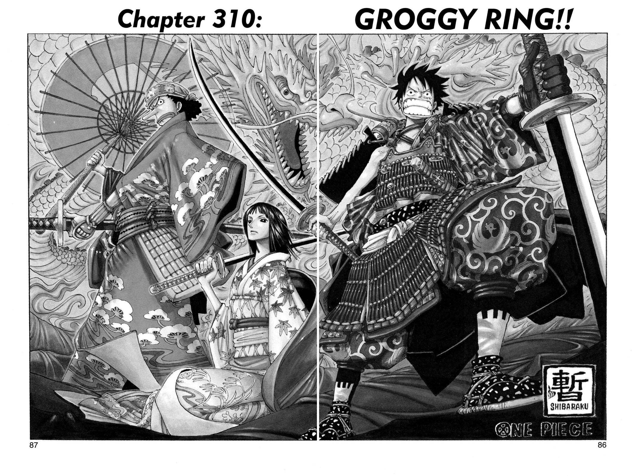 One Piece Chapter 310 Page 1