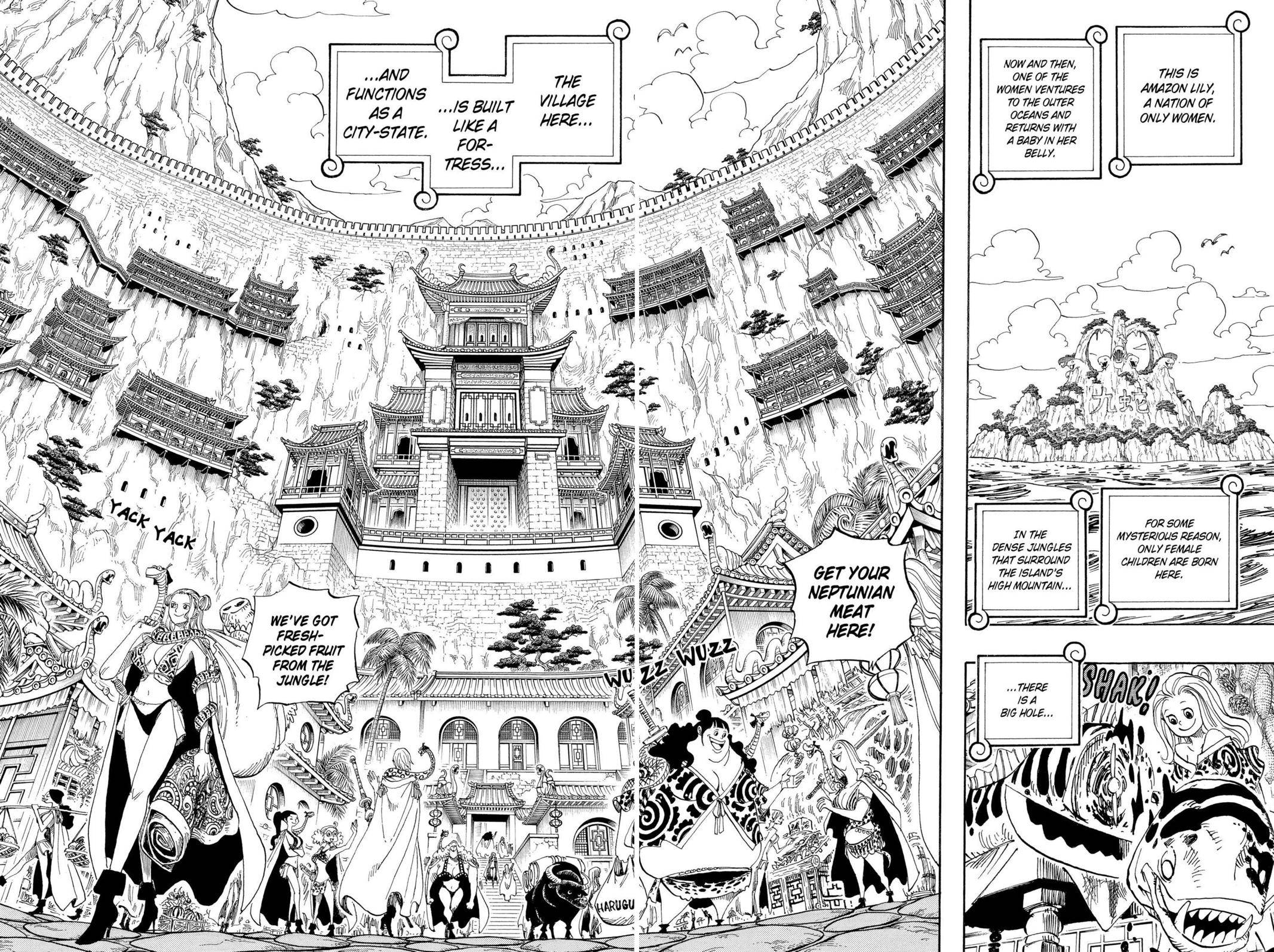 One Piece Chapter 515 Page 2