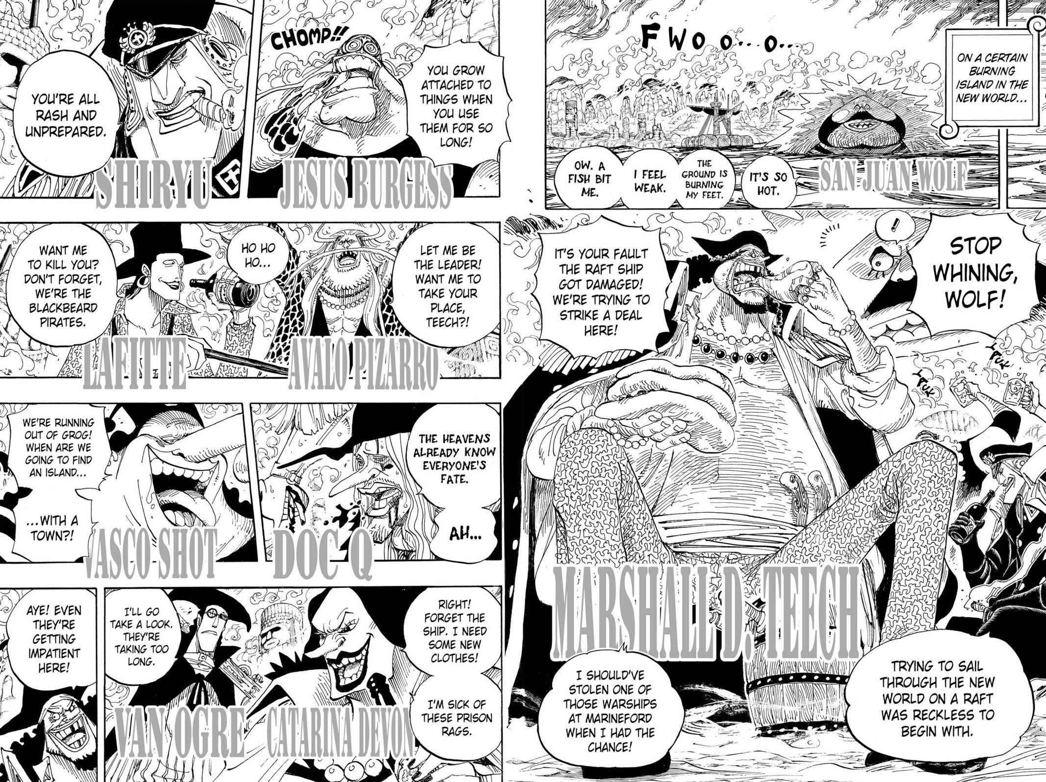 One Piece Chapter 595 Page 13
