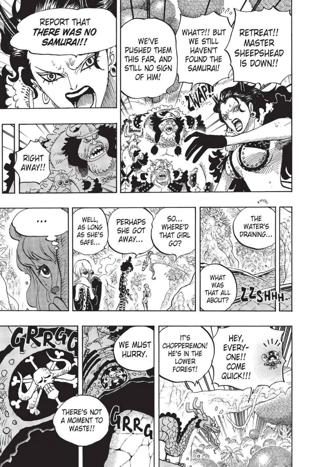 One Piece Chapter 795 Page 9