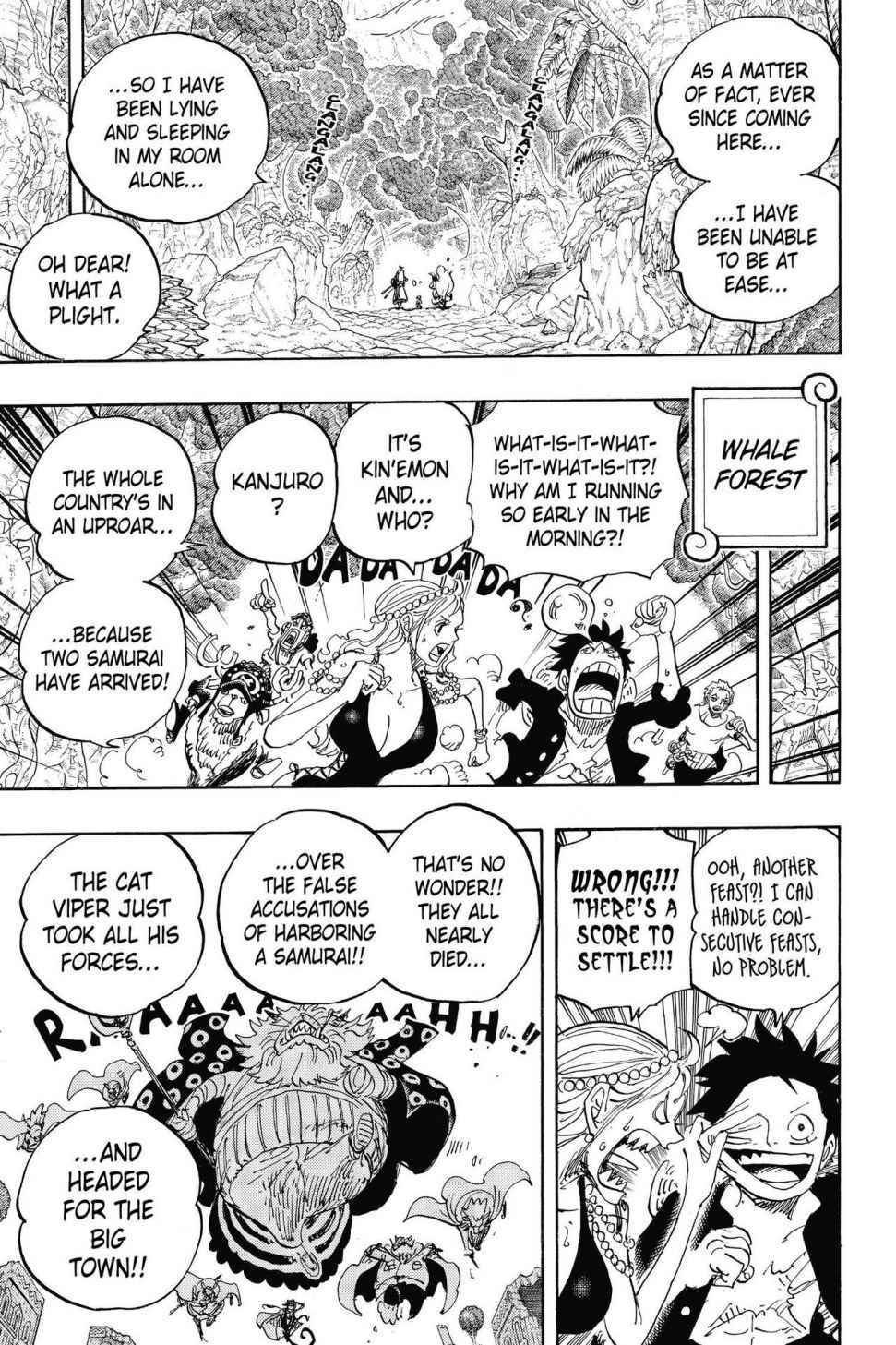 One Piece Chapter 816 Page 5