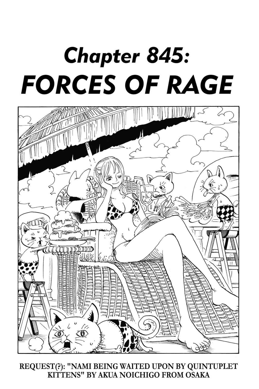 One Piece Chapter 845 Page 1