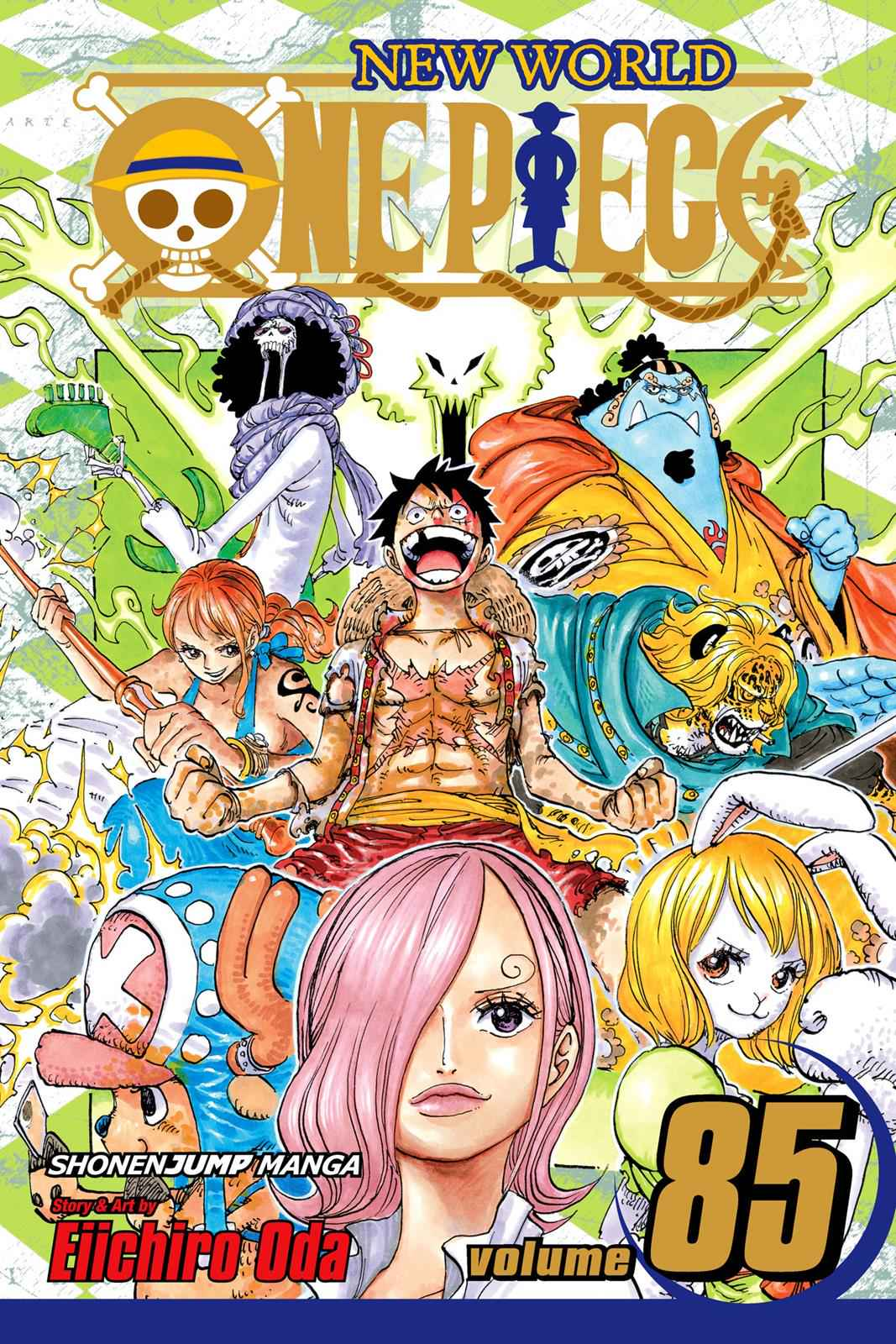 One Piece Chapter 849 Page 1