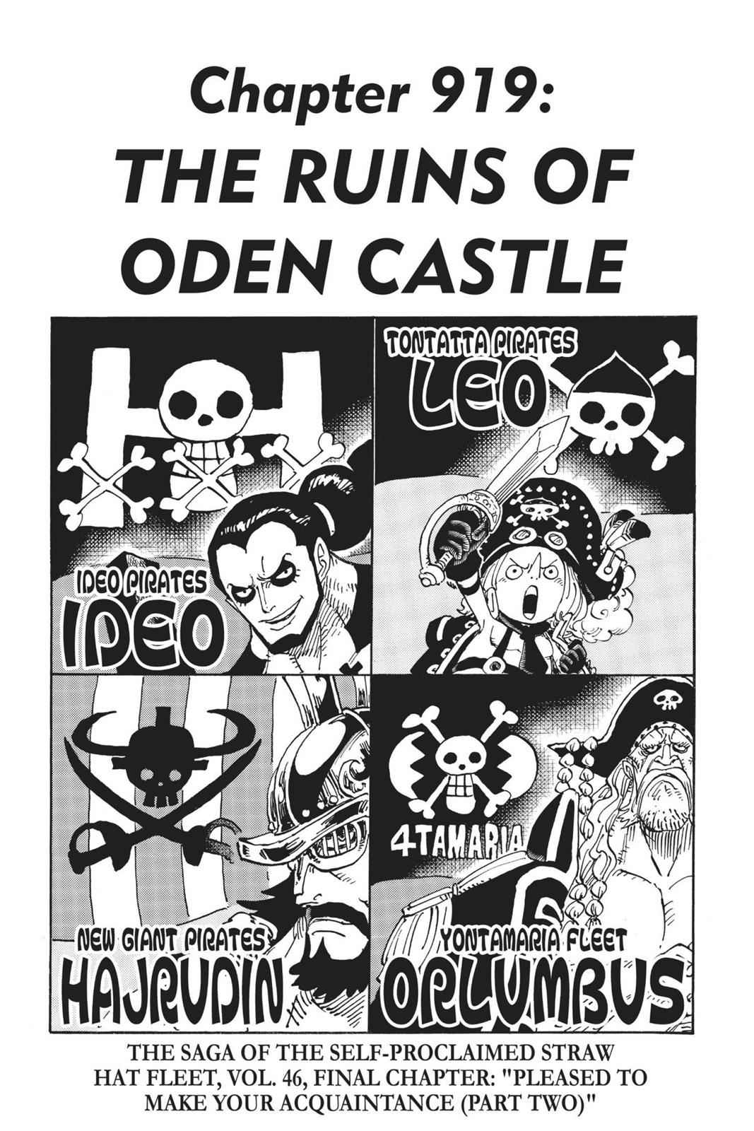 One Piece Chapter 919 Page 1
