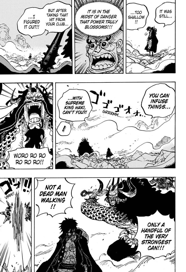 One Piece Chapter 1010 Page 12