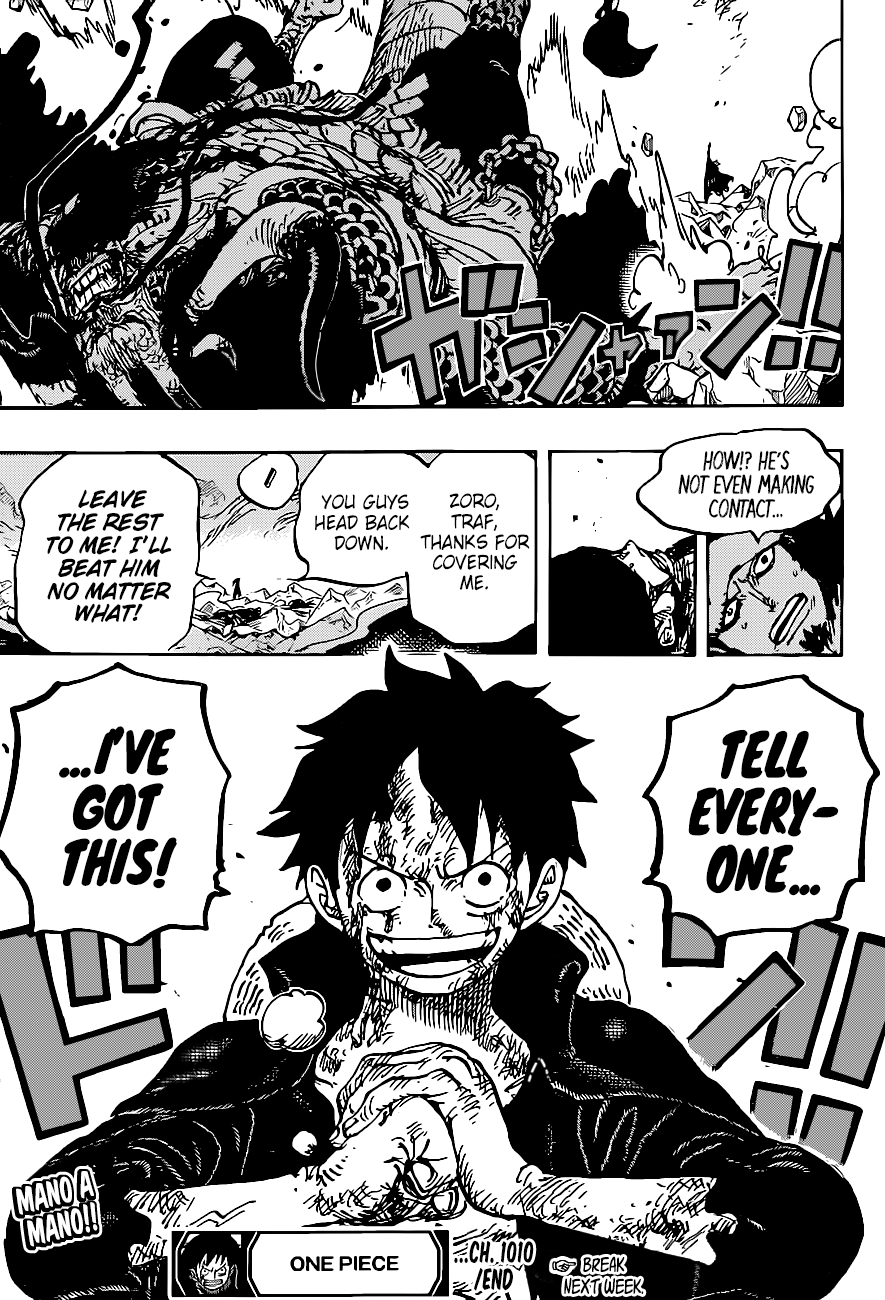 One Piece Chapter 1010 Page 17