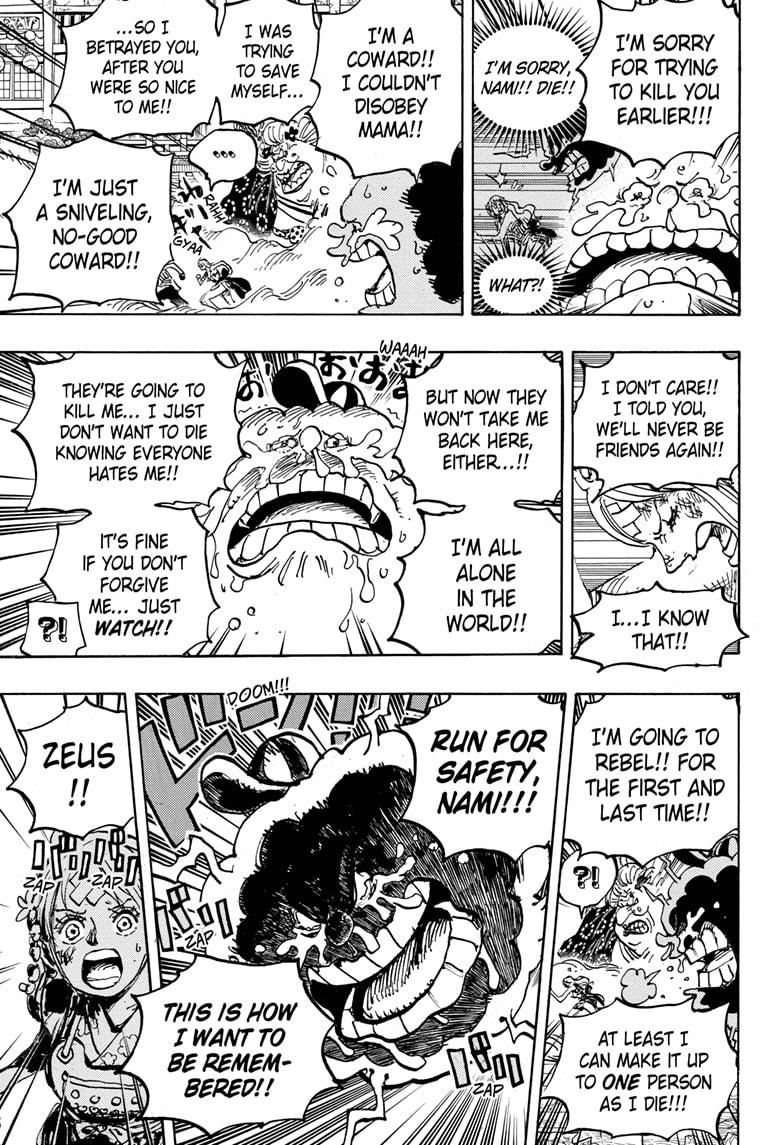 One Piece Chapter 1013 Page 10