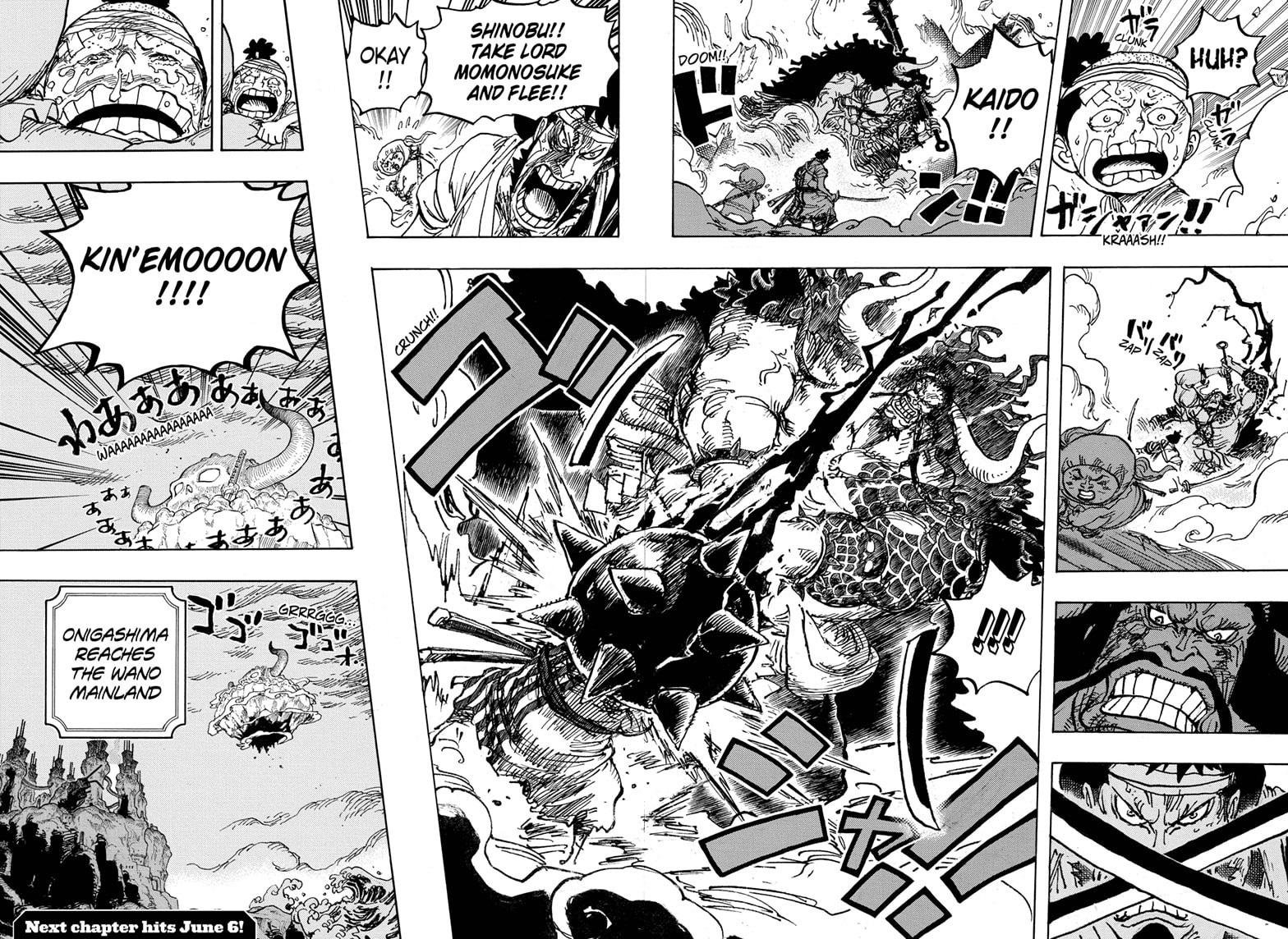 One Piece Chapter 1014 Page 14