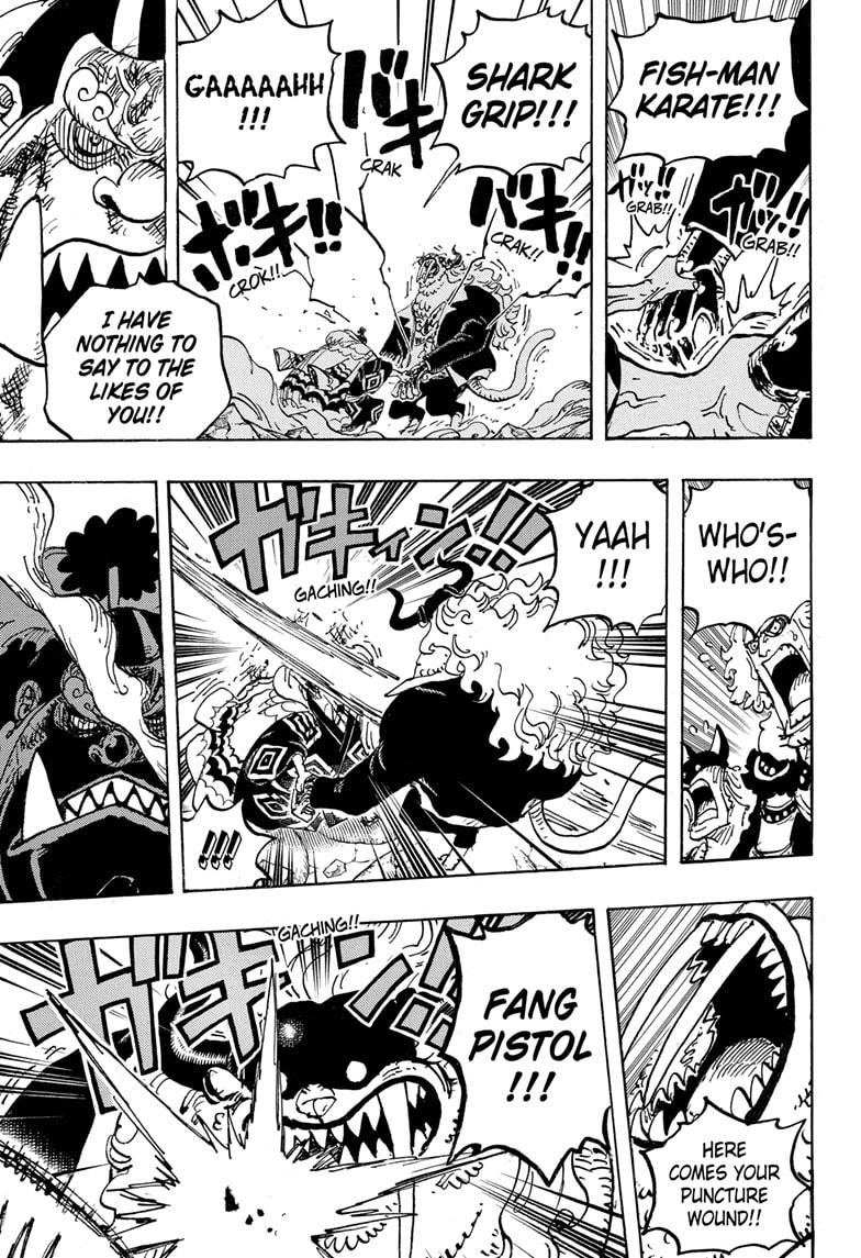 One Piece Chapter 1018 Page 15